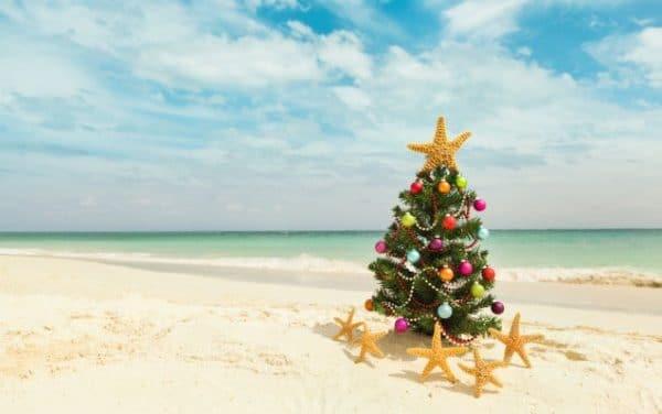 Bonnes fêtes de Noël avec le CDV 44